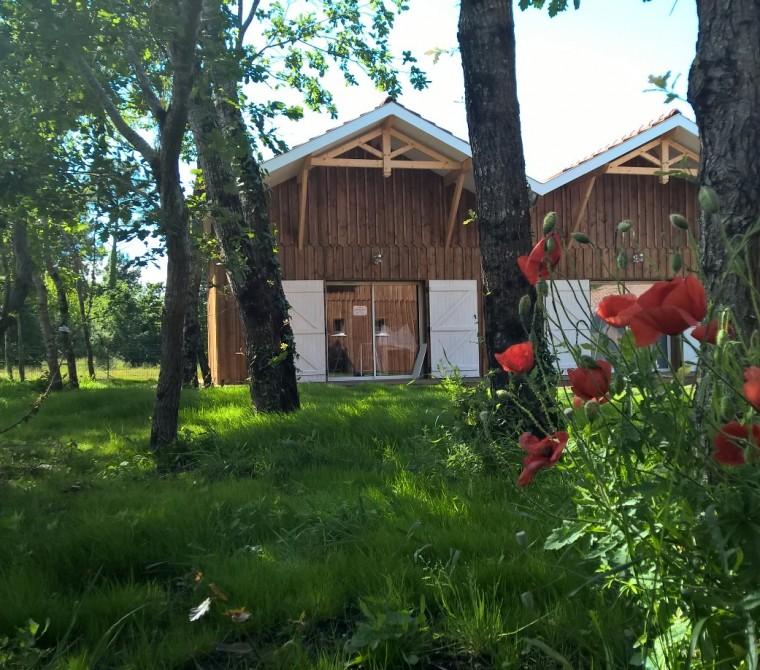Villas Bernache et Avocette, la nature face à l'espace aquatique